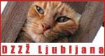 Društvo za zaščito živali Ljubljana